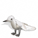 Spore creature - White Tern PNG by Tote-Meistarinn