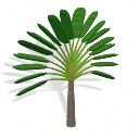Spore Building - Traveller's Palm PNG by Tote-Meistarinn