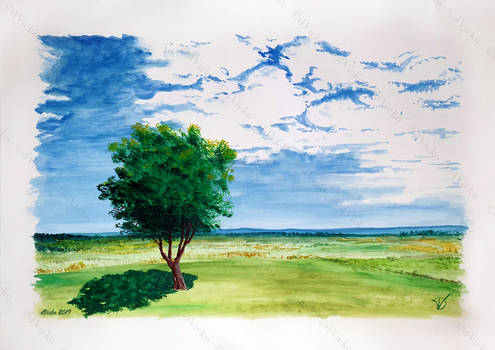 One tree and a meadow