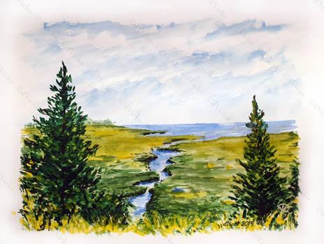 Calm  Wilderness