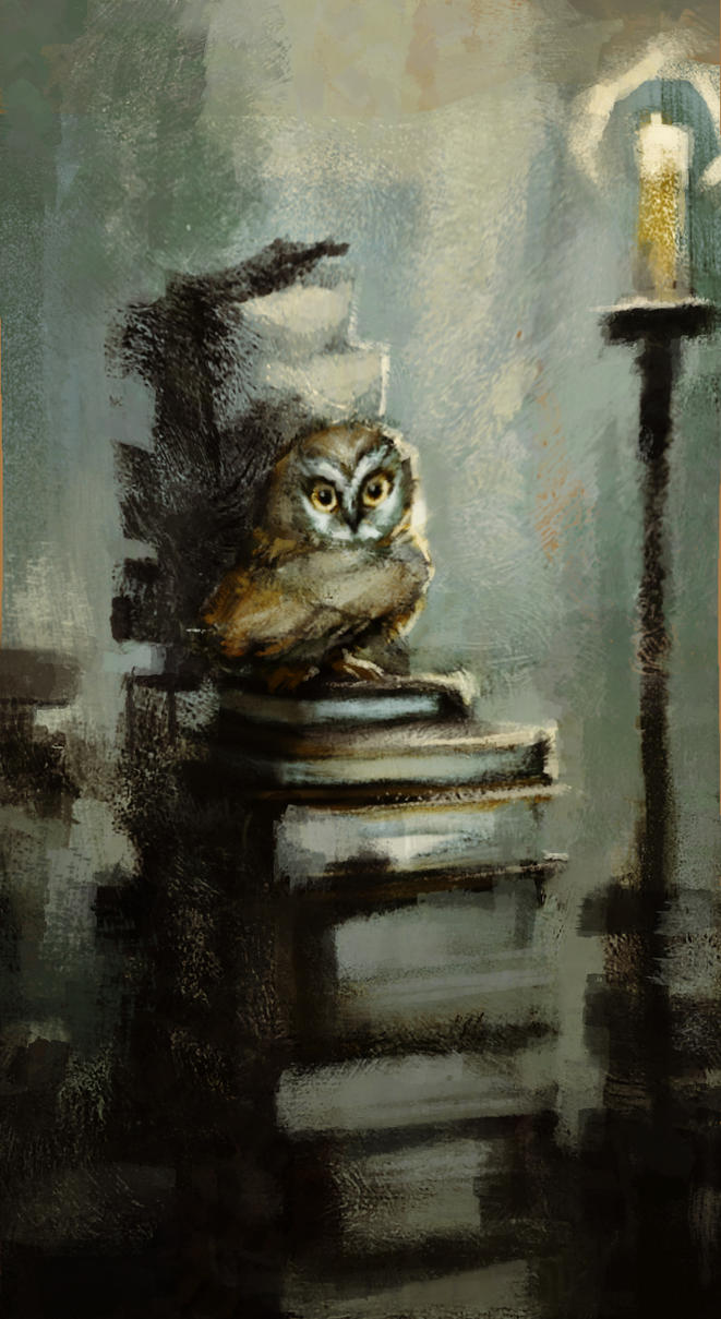 Owl by MadMosquito