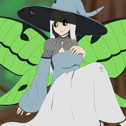 Lace-Moth Witch