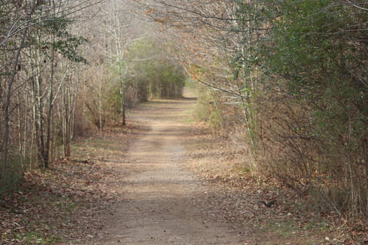 NATURE Greenway Farms path 1