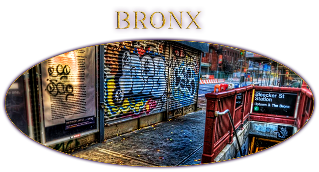 Bronx by LiziiLex
