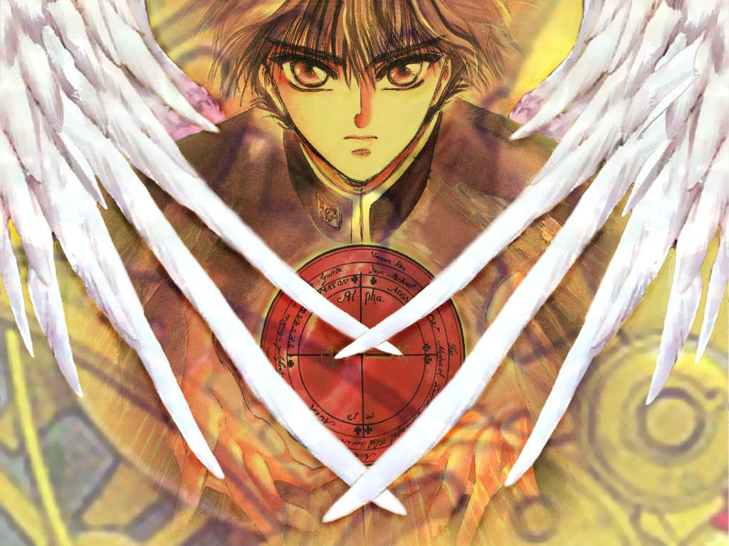 X wings by muzaum