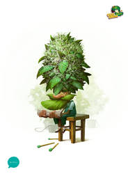 Crazy Grower 2 by Monkill