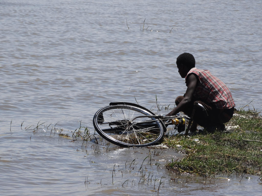 Birding Ethiopia (6/6): Lake Zway & Lake Chelekleka - YouTube