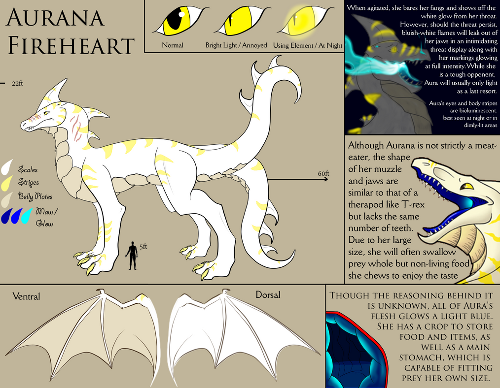 Aurana Fireheart Reference 2016 [Updated] by Endlesshunter