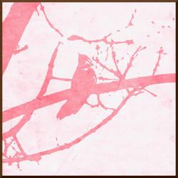 Pink by ShotgunSerenity