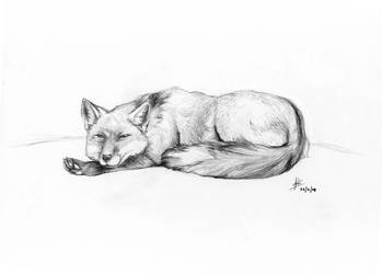 Relaxing... by nativeEvil