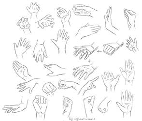 Hand study ref