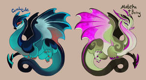 little dragon adopts OPEN