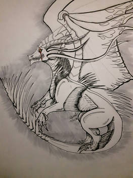 Lioness626 request sketch Dragon
