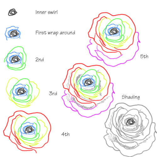 rose tutorial by vixenku on deviantart