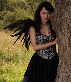 wings in the breeze