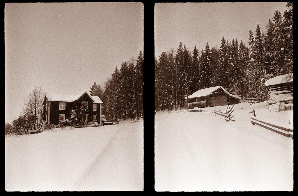 Winter Wonderland by jonasfx