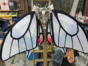 Vlinder05