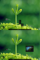 Minimal Nature Leaf by FataMorgana2012