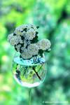 A glass of spring by UgurDoyduk