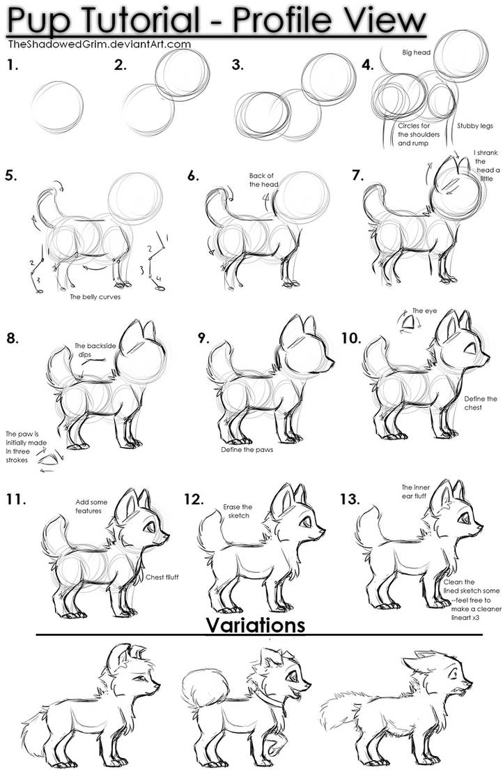 Pup tutorial by TheShadowedGrim