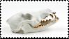 Skull by 1-9-0-1