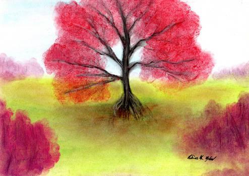 Elder Tree Valley