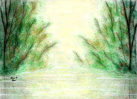Green Forest River towards the Sun