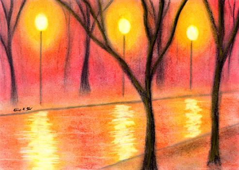 Lantern lit Avenue at Night