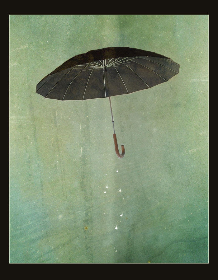 Rain by silent-reverie