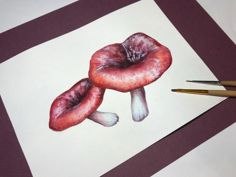 Watercolor: Mushrooms 2 by qi-art