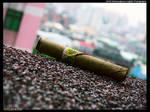 Burmese Cigar