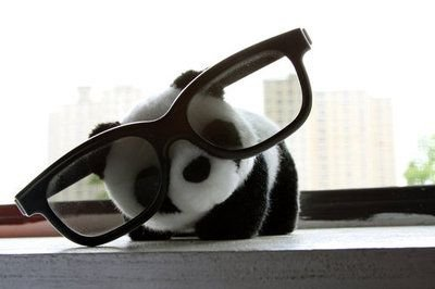 Real Life Pictures V2 - Page 10 Panda_glasses_by_royalreptile-d3fxdnw