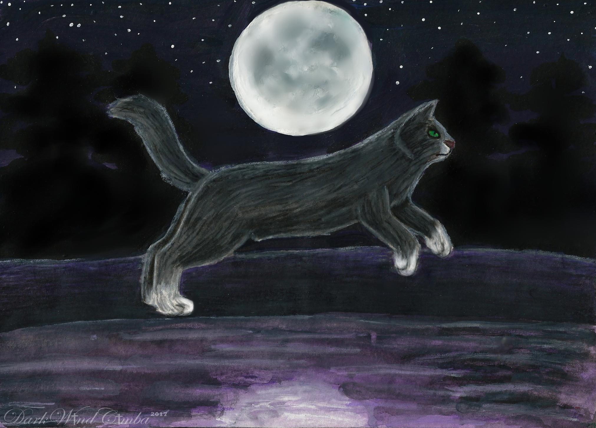 .:Moon Dance:. by DarkMageVarja
