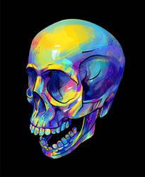 skull 3/4