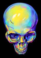 skull by Ramonova