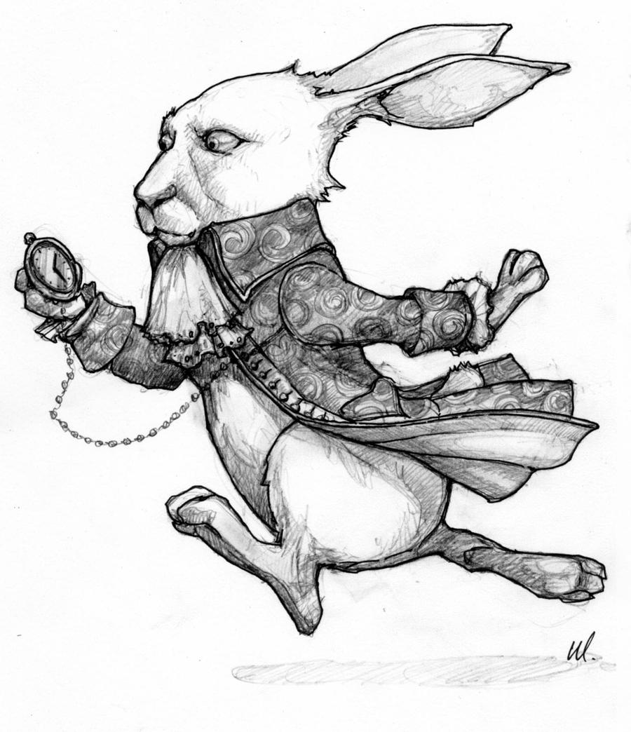 Costume Sketch - White Rabbit by AliceInWonderland