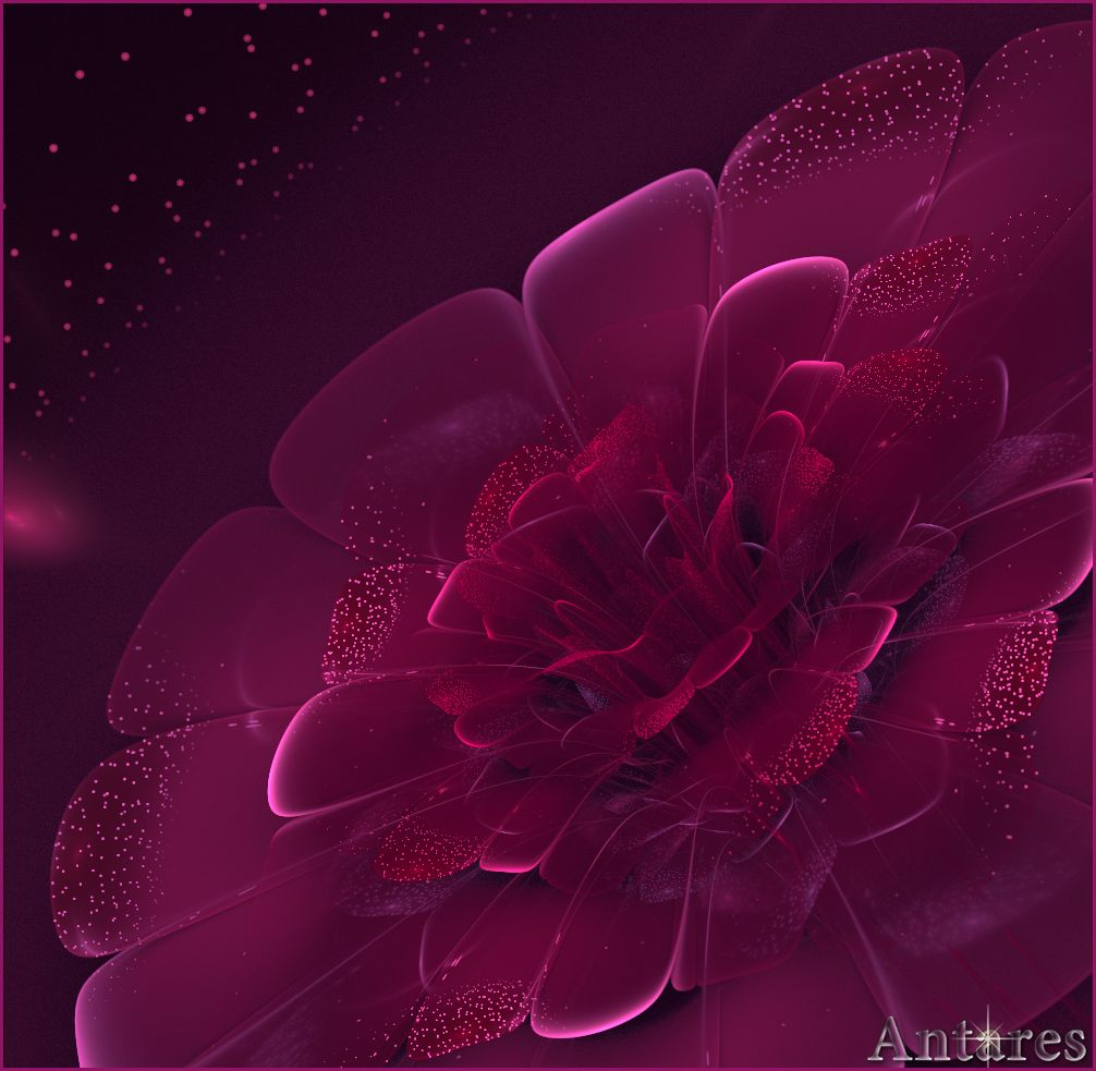 Twinkling flower by Antares2