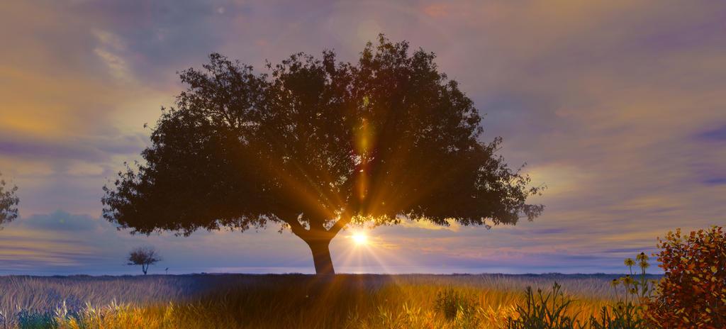 Postavi sliku i zatraži sledeću - Page 20 Sunset_time_by_aradell-daj21cl