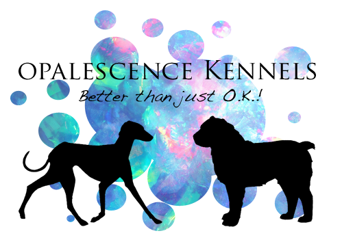 OpalescenceKennels's Profile Picture