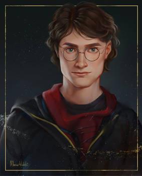 #3 Just Harry