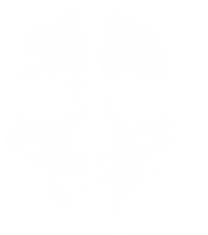 Call of Duty Ghosts Symbol