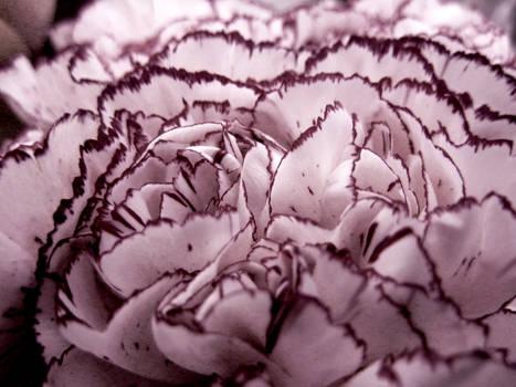 Faux Fleur