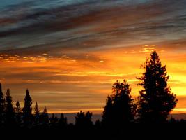 Flaming Sky