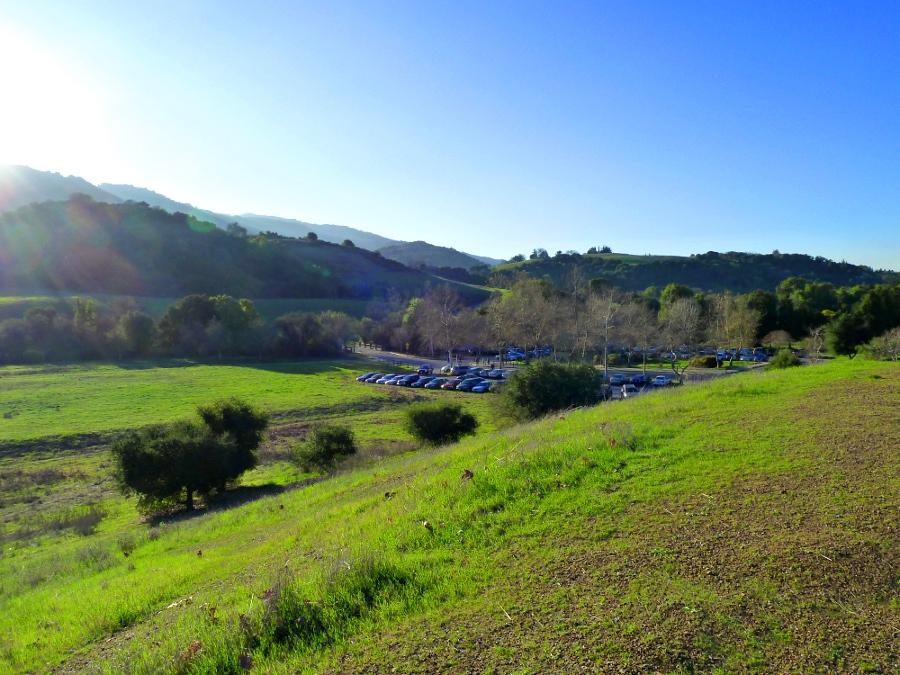 Greener Pastures by AtomicBrownie