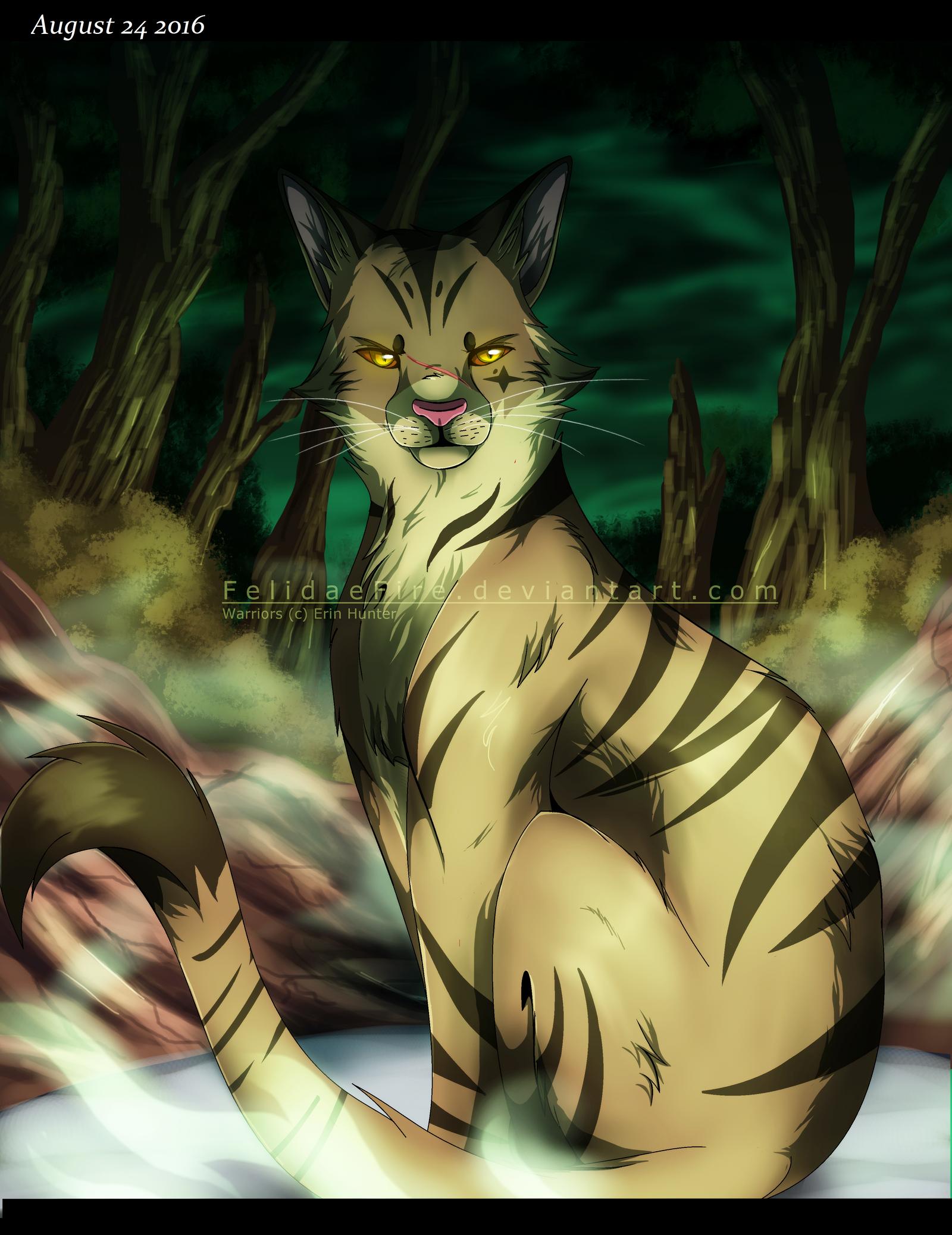 Warrior Cat Websites Role Play