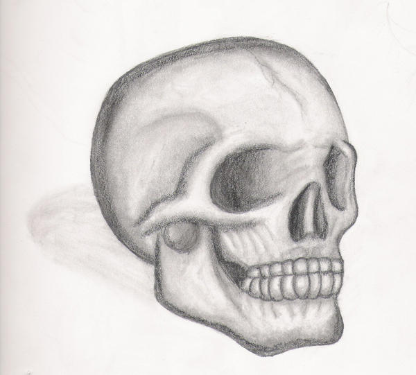 Draw Skulls Can Be This Easy Pencil Drawings Of Skulls And Roses