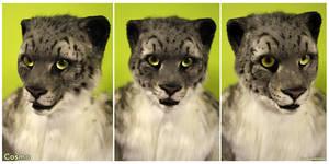 Cosmo Snow Leopard (headshots)