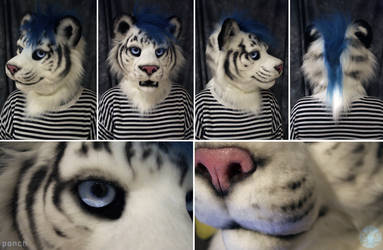 Ponch Tiger by FarukuCostumes