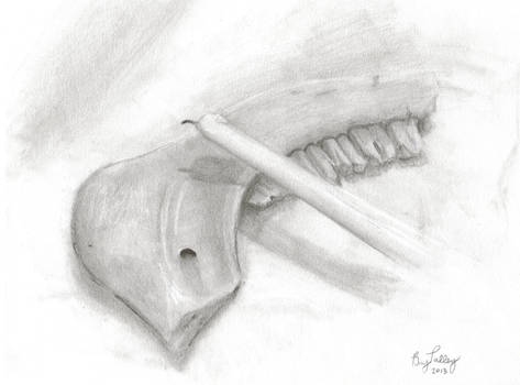 Jaw Bone and Candle Still Life