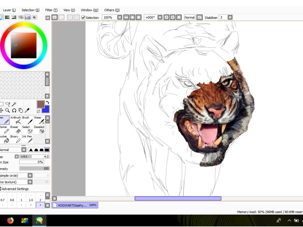 Tiger by mrtvejpes